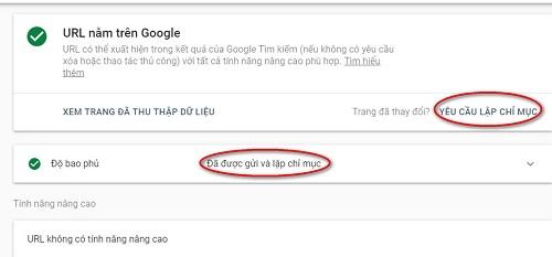 cách Đưa bài viết nhanh lên google
